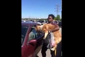 Lady Leaves Dog in Her Hot Car For an Hour, Coincidentally She is The Biggest Trash Bag of All Time.