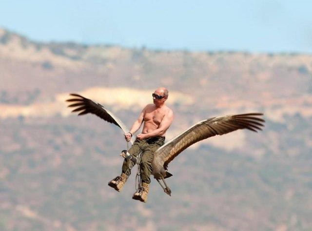 putinbird